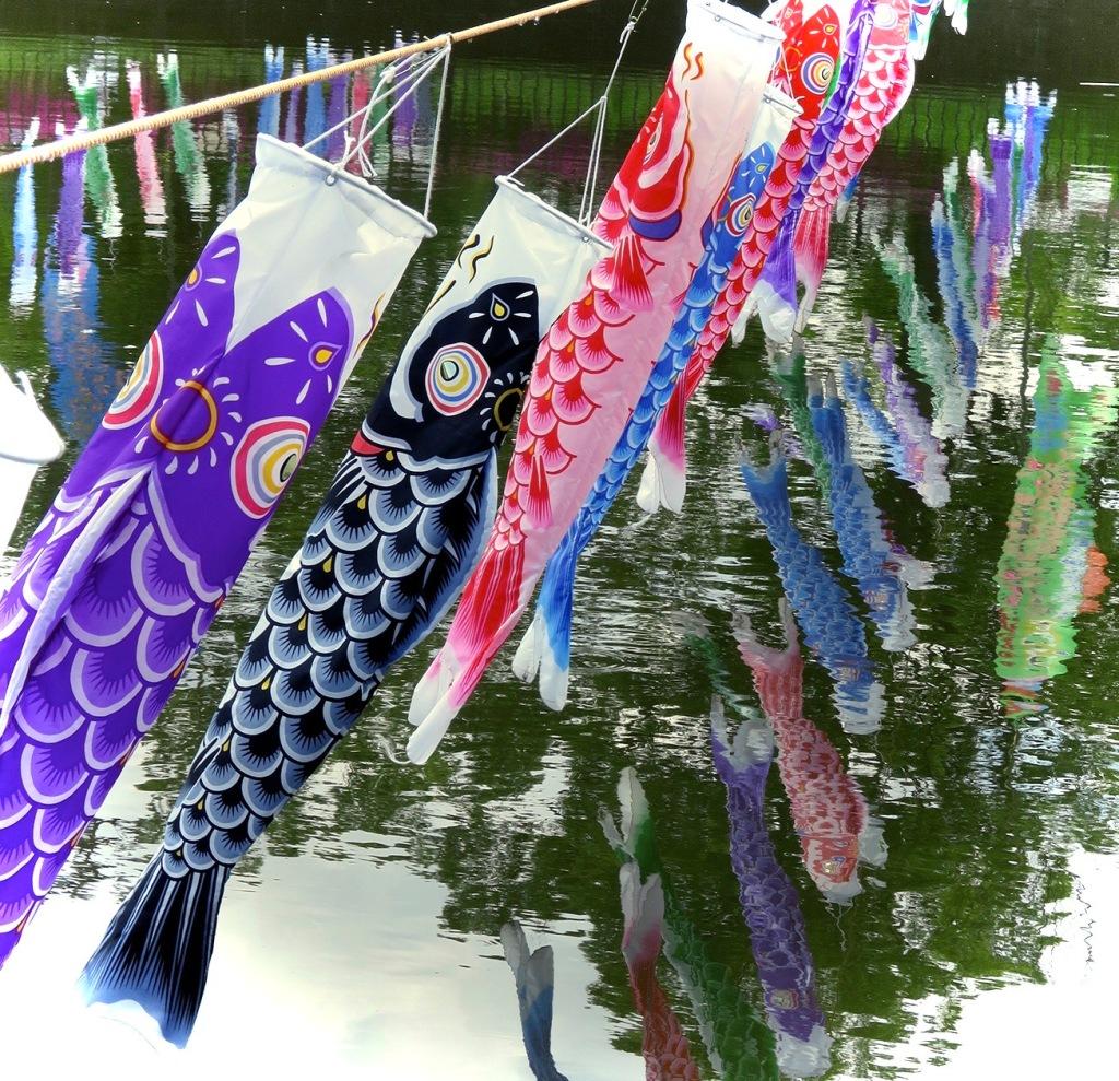 Koi nobori fish flags over the river at Tatebayashi