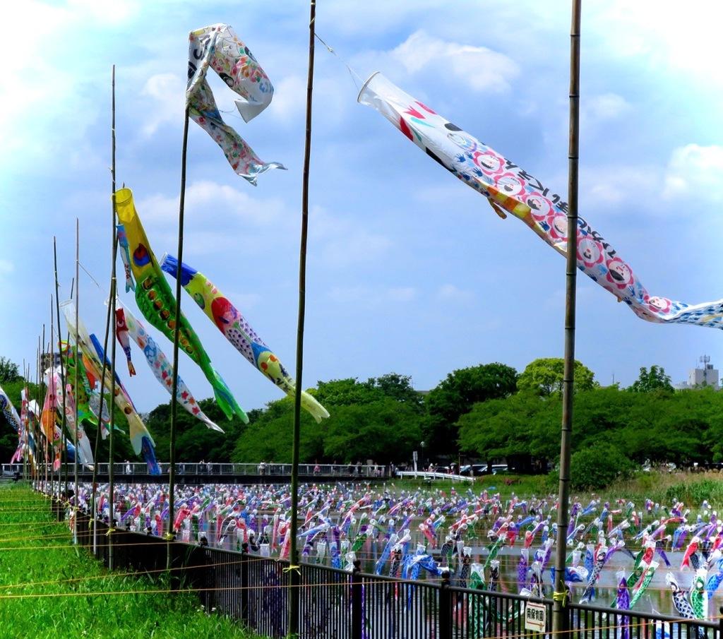 Thousands of big and small koi nobori carp flags at Tatebayashi