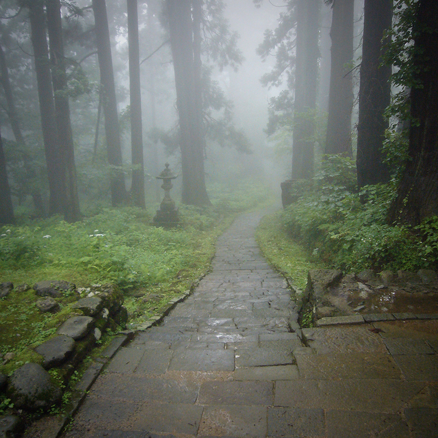 Misty stone-paved trail through the cedar forest on pilgrimage route at Haguro-san