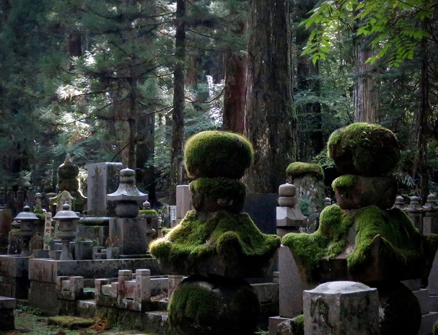 Graveyard at Koya-san with mossy lanterns and tall cedars