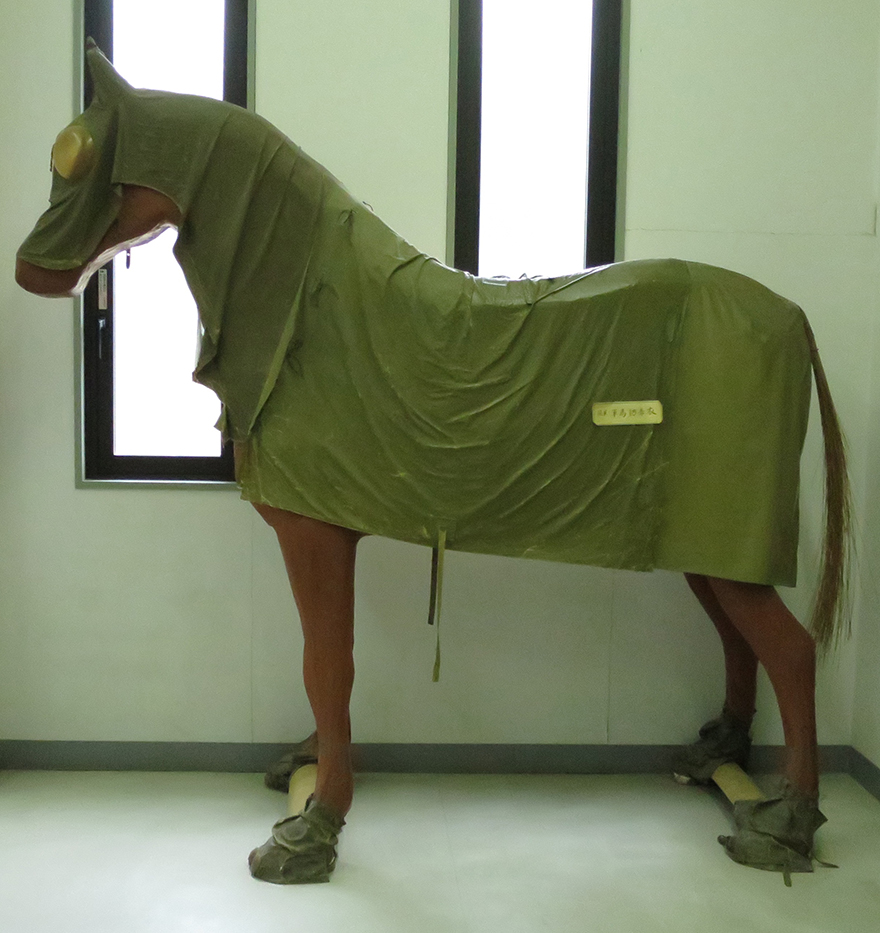 Horse mannequin in protective poncho at Okunoshima poison gas museum