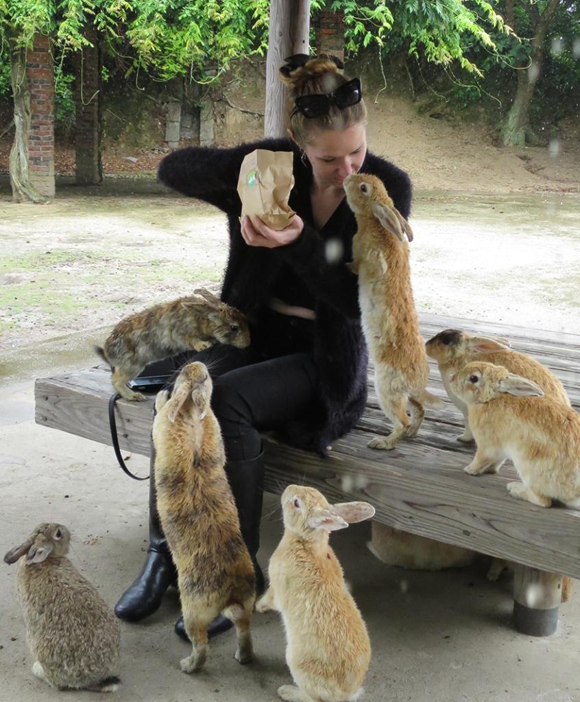 Rabbits gathering around visitor on Okunoshima Bunny Island