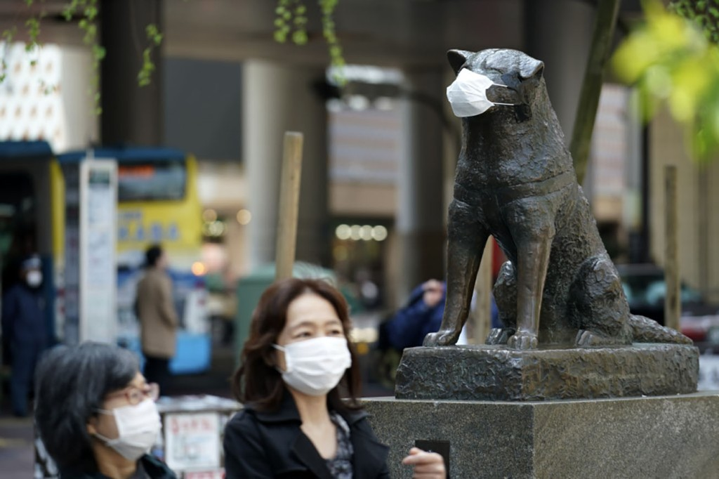 Hachiko statue at Shibuya Station wearing a face mask