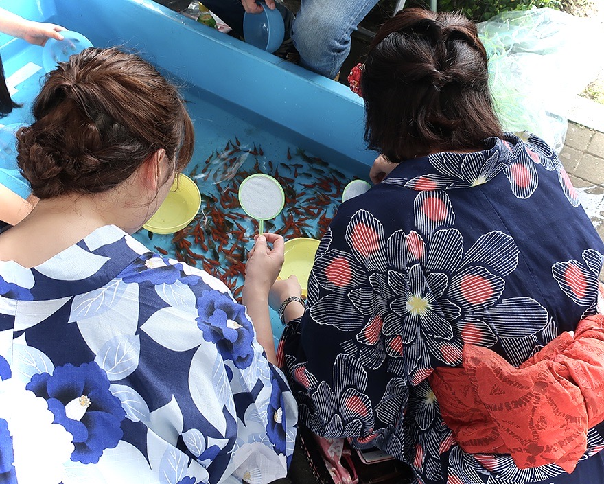 Two young women in summer kimonos catching goldfish at summer festival in Edogawa