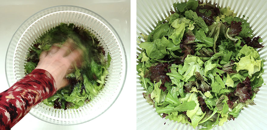 Photos of how to wash lettuce in a salad spinner