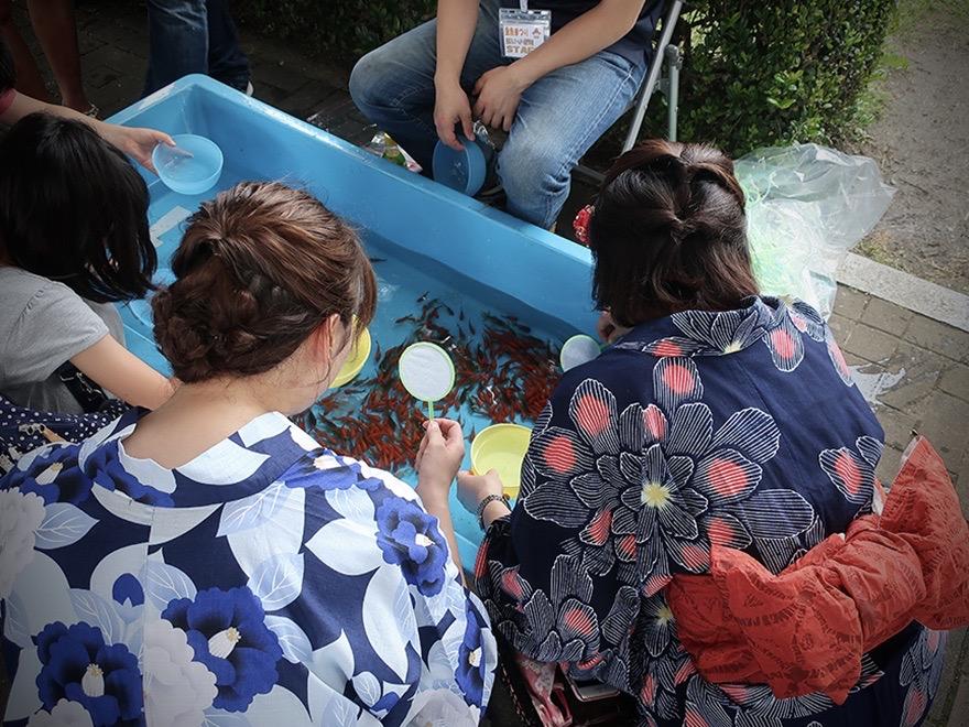 Young women in yukata catching goldfish at the Edogawa Goldfish Festival