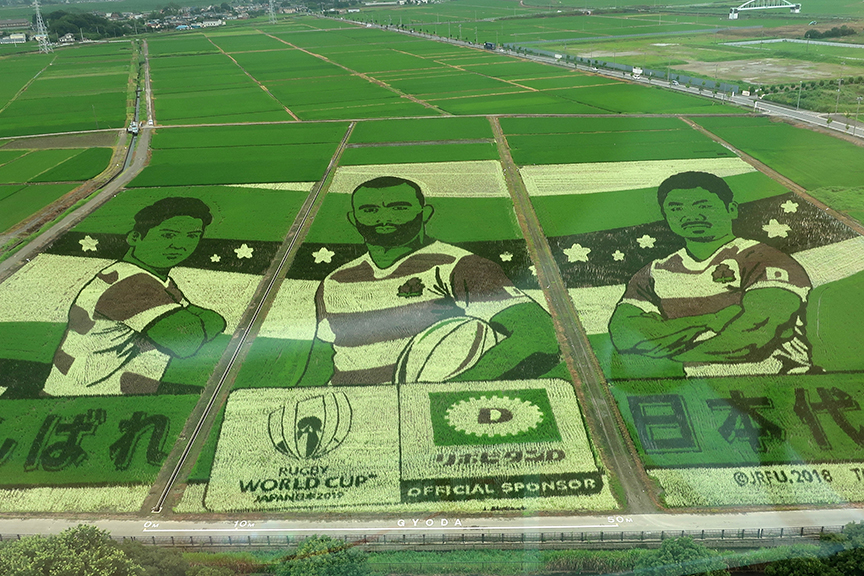 Rice field tambo art in Gyoda 2019 rugby players