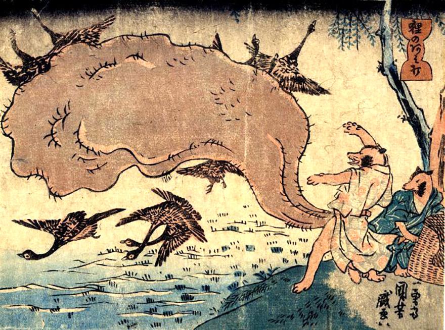 Woodblock print by Juniyoshi showing tanuki hunting geese by throwing his huge scrotum at them