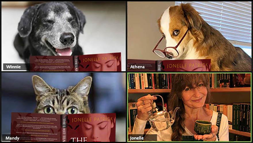 Book zoom with animals