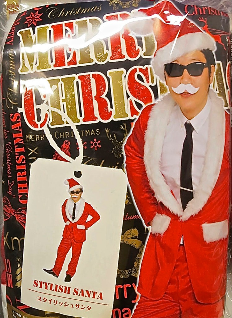 Stylish Santa costume