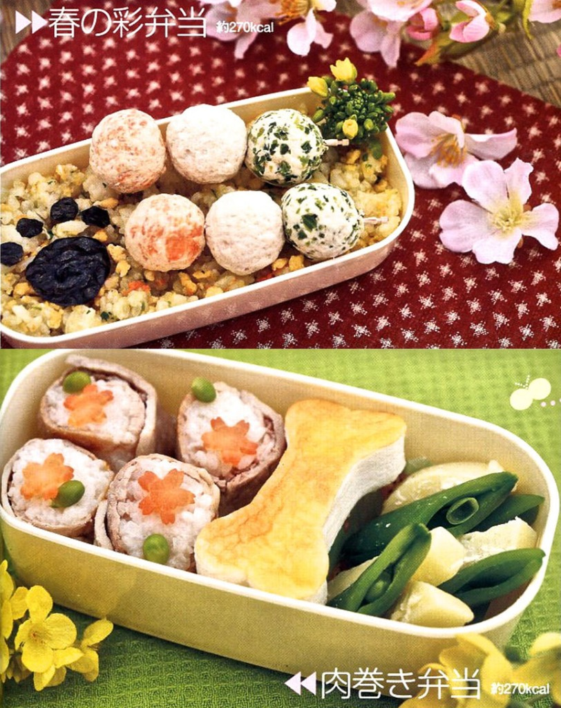 Dog food bento boxes