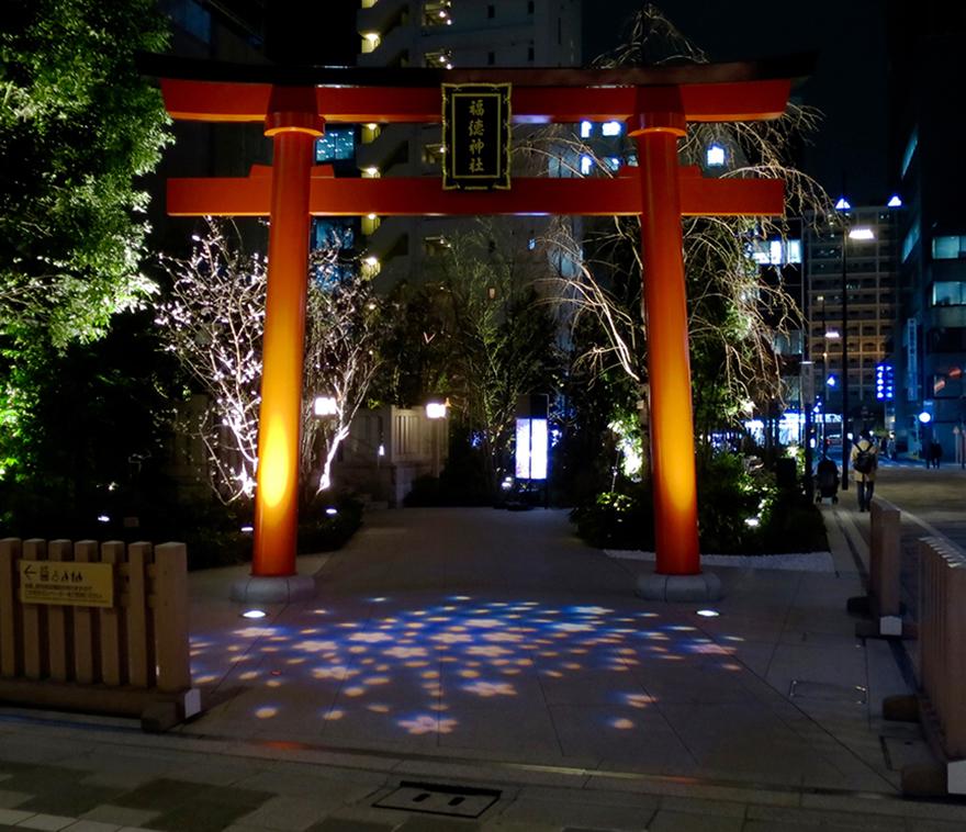 Fukutoku Shrine lit up in pink for cherry blossom season