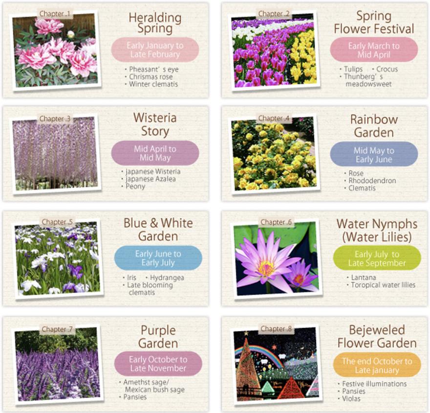 Flower seasons at Ashikaga Flower Park