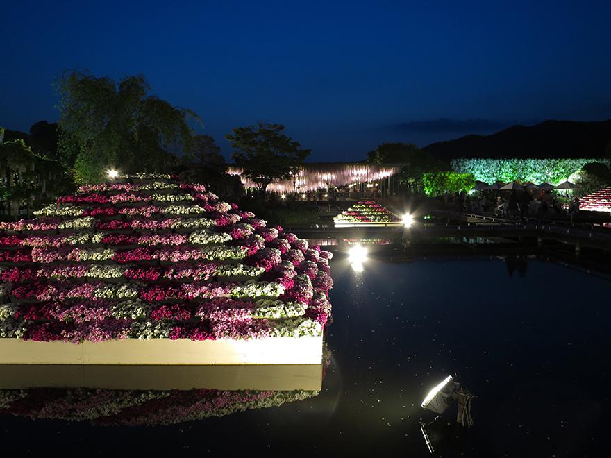 Reflecting pools at Ashikaga Flower Park