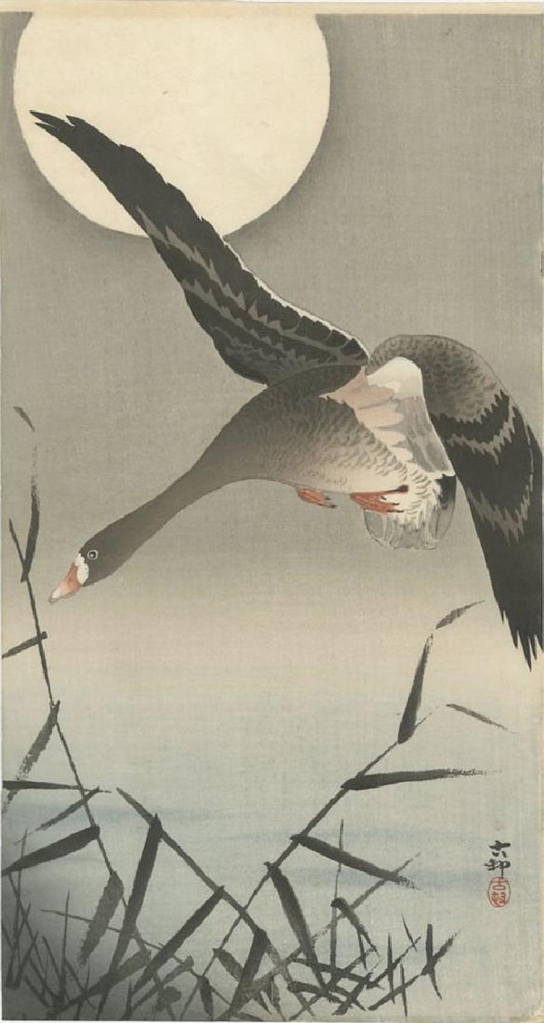 Woodblock print of a flying goose and the moon by Ohara Koson