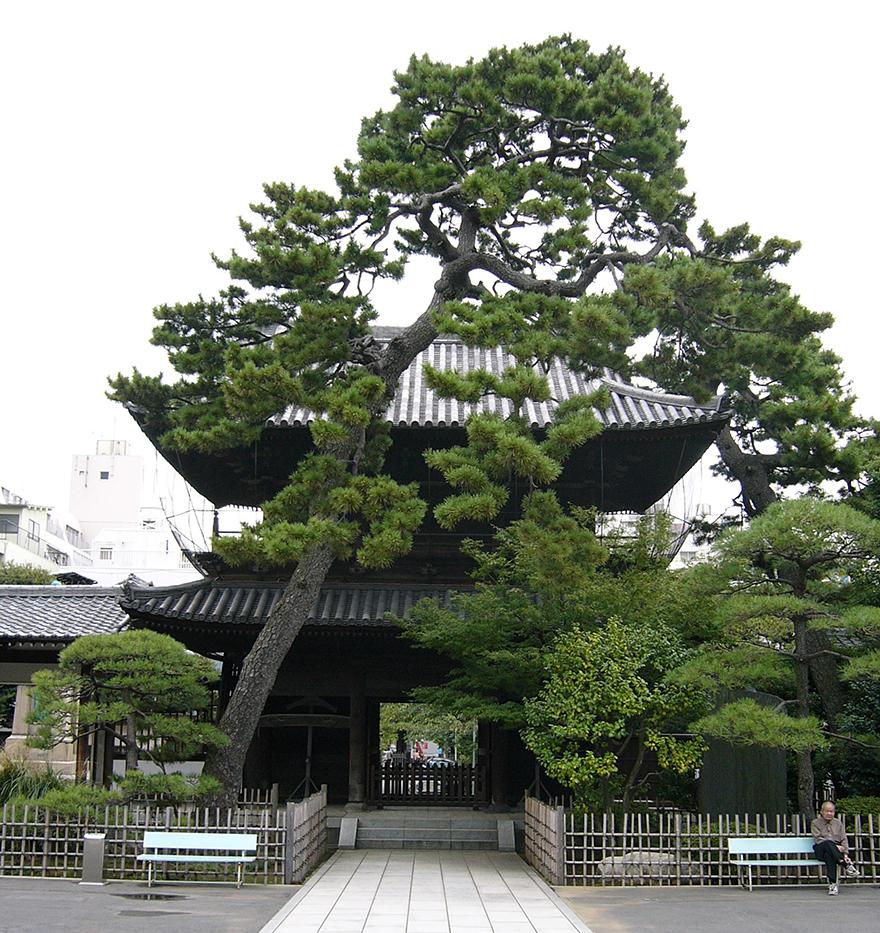 Main gate of Sengakuji temple